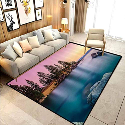 Lake House Decor Rugs for Living Room Outdoor Rugs Trees on The Alley and Stones in The Lake Motivational Nature Inspired Rest Home Decor for Kids Teens Room Comfy Cute Floor Carpets Pink Blue