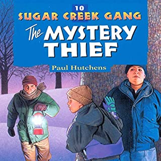 The Mystery Thief cover art