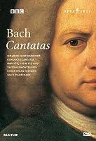 Bach Cantatas [DVD] [Import]
