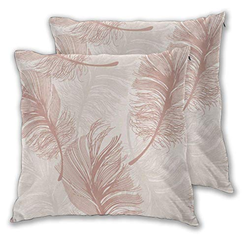 erjing Pack of 2 Soft Decorative Square Throw Pillow Covers, Floral Wallpaper Rose Gold Cushion Cases Pillowcases for Sofa Bedroom Car,20 x 20 Inch