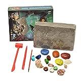 NUOLUX - Juego de excavación de piedras preciosas para niños, piedras preciosas auténticas, mega gemas, kit de creación para niños