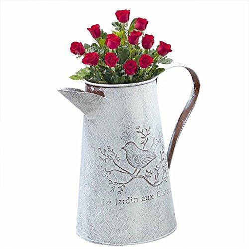 SNIIA gieter, in plate gieter, ijzeren kruik vintage decoratieve kruik vazen voor thuis kantoor winkel pastorale decoratie (bloemen niet inbegrepen)