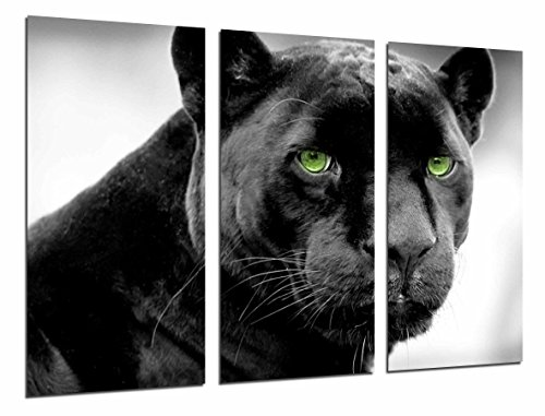 Cuadros Camara Fotográfico Pantera, Jaguar, Felino, Animal Salvaje Tamaño total: 97 x 62 cm XXL, Multicolor