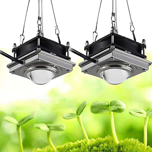 POOPFIY Led Grow Light 150W Phyto Lamp Full Spectrum Lámpara de Interior para Plantas Grow Box Tent