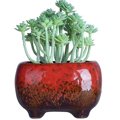 Saftige Töpfe | Keramik Bonsai Topf mit Drainage Rechteckige Blume Pflanze Kaktus Pflanzgefäß, 4.8x3.4x3 inch, Rot