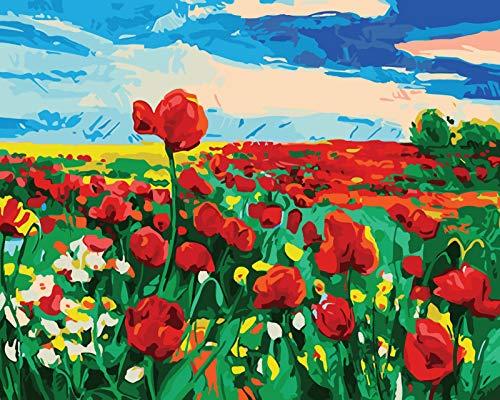 Suubboo Schilderij Door Aantal Handgeschilderde Woonkamer Bloemenlandschap Decoratieve Schilderij Frameloze Parfum Poppy 40X50Cm