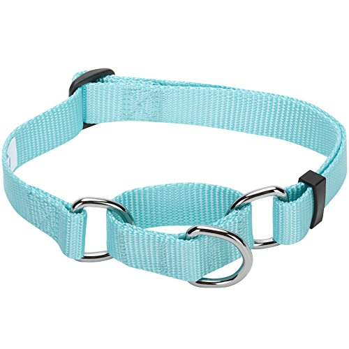 Blueberry Pet Essentials 19 Colors Safety Training Martingale Dog Collar, Mint Blue, Large, Heavy Duty Nylon Adjustable Collars for Dogs
