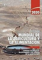 El estado mundial de la agricultura y la alimentación 2020: Superar los desafíos relacionados con el agua en la agricultura