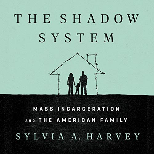 The Shadow System cover art