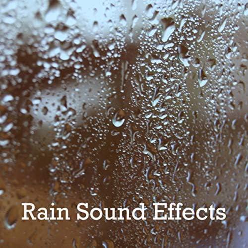 Rain Sounds & White Noise, Rain & Meditation Rain Sounds