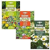 Set Semi di Fiori da Piantare in Vaso da Giardino - in 3 Bustine - Mix di Sementi per Giardino - Primavera Multicolor - Margherite - Campi in Fiore (Mix di Fiori 3)