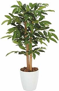 光触媒 人工観葉植物 光の楽園 アルデシア 90 208A100