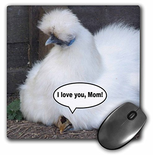 3Drose LLC 8 X 8 X 0.25 Inches Mouse Pad, Cute Chick Says I Love You Mom Funny White Fluffy Feather Chicken Mothers Day Fun Animal Photography (Mp_113042_1)