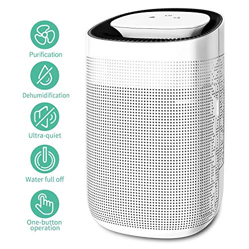 Best dehumidifier air purifier combination