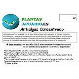 PlantasAcuario.es Antialgas Concentrado para Acuario 1000ml