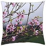 637 Throw Pillow Covers Tenerife Spring Flower Tree Pink Flowers Nature Funda De Cojín Sofá Impresión A Doble Cara Sofá Decoración Personalizada Funda De Almohada Sala De Estar 45X45C