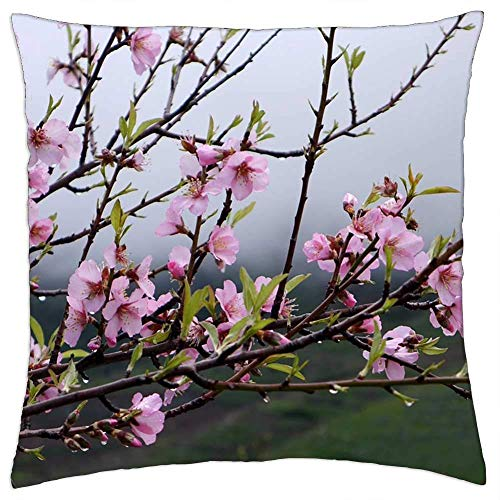 637 Throw Pillow Covers Tenerife Spring Flower Tree Pink Flowers Nature Funda De Cojín Sofá Impresión A Doble Cara Sofá Decoración Personalizada Funda De Almohada Sala De Estar 45X45C