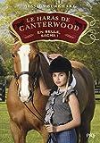 Le haras de Canterwood - tome 01 : En selle, Sacha ! (1)