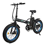 ECOTRIC Fat Tire Folding Electric Mountain Bike 36V 12Ah Removable Lithium Battery Beach Snow Bicycle 20' Ebike 500W Electric Moped Electric Bicycles