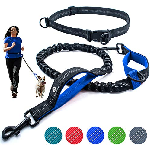 Hands Free Dog Leash for Running Walking HikingTraining Jogging for Medium and Large Dogs up to 150 lbs Durable Dual Handle Waist Leash with Reflective Bungee and Adjustable Waist Belt