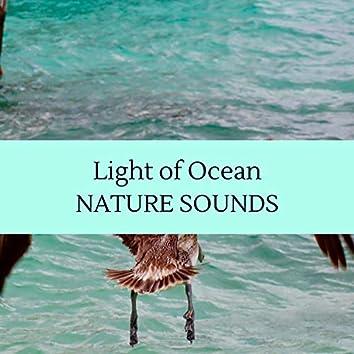 Light of Ocean - Nature Sounds