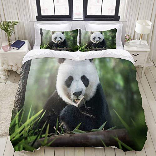 Rorun Funda nórdica, Animal Panda Lindo Comiendo bambú en el Bosque Verde, Juego de Cama Juegos de Microfibra de Lujo ultraligeros y cómodos