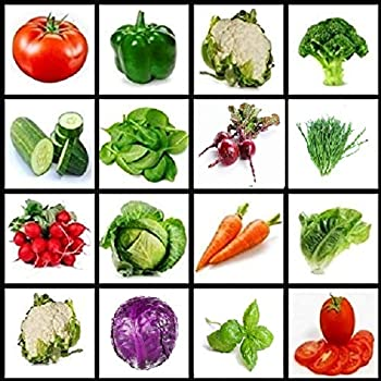 Vegetable seeds, Full size seed packs, Variety pack of vegetable seeds, Garden seeds, Seeds for indoor or outdoor gardening, Seeds for planting