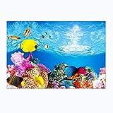 HM & CL1 Pcs Pecera Pintura de Fondo Papel Tapiz de Doble Cara 3D pecera paisajismo Pintura Decorativa (50 * 82 cm) A