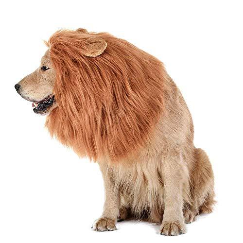HanDingSM Hund Kostüm Lion Mähne Perücke für Hund lustige Halloween verkleiden Sich Cosplay, geeignet für mittlere und große Hunde (Eared)