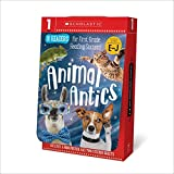 Animal Antics First Grade Reader Box Set: Scholastic Early Learners (Guided Reader)