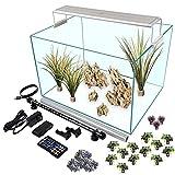 Serene 13 Gallon Aquarium Starter Kit with 24hr Programmable RGB+W Serene LED, Background Light, Decor (with 4 Piece Dragon Stone and Lush Aquascape)