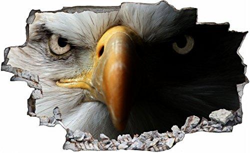 DesFoli Adler Falke 3D Look Wandtattoo 70 x 115 cm Wanddurchbruch Wandbild Sticker Aufkleber C114