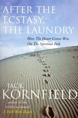 After The Ecstasy, The Laundry (English Edition)
