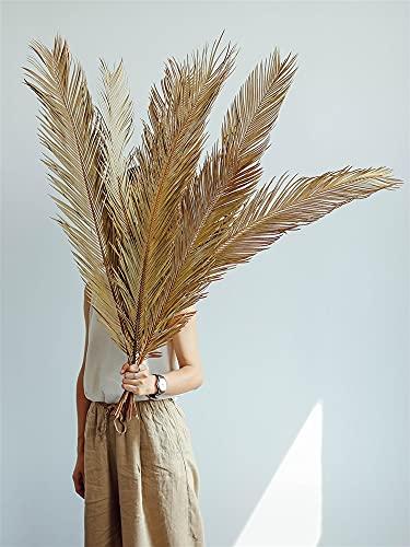 Flor Seca de la Hoja del Ventilador de Palma, Planta Seca Natural Sago Cycas Branch, Hojas de Fan de Palma Seca, decoración de la Mesa de la casa de la Boda de Fiesta -60cm