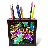 3dRose ph_243284_1 - Soporte para bolígrafos de azulejos (5 pulgadas, imagen colorida de orquídeas, rojo/verde)