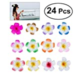 Frcolor Set de 24 flores de 6 cm de forma hawaiana, pinzas para el cabello para fiestas en la playa, eventos y decoración de bodas (12 colores)