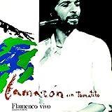 Flamenco Vivo (Vinilo De Color)