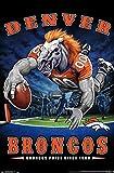 Trends International NFL Denver Broncos - End Zone 17 Wall Poster, 14.725' x 22.375', Premium Unframed Version