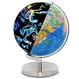 FGKLU 9 Inch 2 In 1 LED Iluminado Globo Terraqueo, Bola Mundo con Mapa Mundial Detallado, Base Soporte de Metal, se Puede Utilizar para DecoracióN de Oficina y Hogar