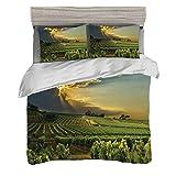 Juego de funda nórdica (220 x 240 cm) con 2 fundas de almohada Lagar Ropa de cama con impresión digital Puesta de sol sobre los viñedos del sur de Francia Impresión de la imagen de los rayos solares d