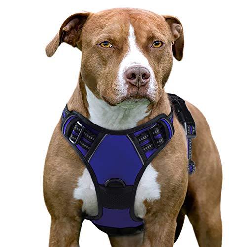 Eagloo Hundegeschirr Geschirr für Große Hunde Anti Zug Mittelgroße Brustgeschirr No Pull Sicherheitsgeschirr Auto Dog Harness Labrador Welpengeschirr Joggen Ausbruchsicher Weich Gepolstert Blau XL