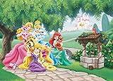 1art1 Disney Prinzessin - Aschenputtel, Arielle, Rapunzel Und Aurora Mit Tieren Fototapete Poster-Tapete 160 x 115 cm