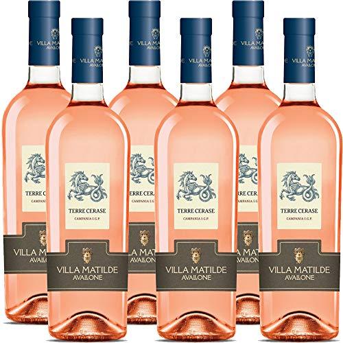 Terre Cerase Igp | Rocca dei Leoni | Villa Matilde | Vino Rosè | Rosato della Campania | 6 Bottiglie 75Cl | Idea Regalo