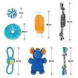 Zoom IMG-2 toozey elefante giocattolo per cuccioli