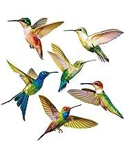 6 Piezas Colibríes Se Aferra a Ventana Adhesivos de Ventana Anticolisión Calcomanías para Evitar Golpes de Pájaros en Ventana Adhesivo de Vinilo no Adhesivo de Vidrio Colibrí Pegatinas (6 Piezas)