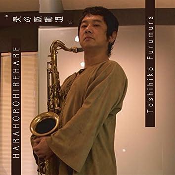 Harahorohirehare Oku No Gekihosomichi