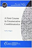 A First Course in Enumerative Combinatorics (Pure and Applied Undergraduate Texts)