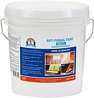 One Shot 1S-AFPC Anti-Fungal Paint, 1 Gallon - White