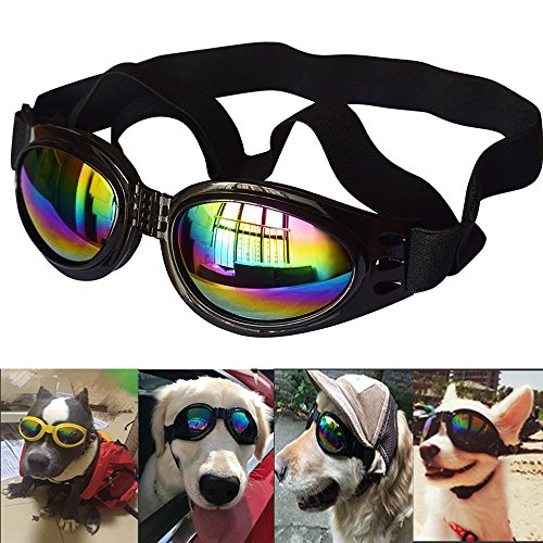 Collapsible Dog Sunglasses