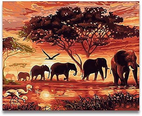 KYKDY Animal Sunset Manada de elefantes africanos Cuadro de pintura al óleo por bricolaje Por números con kits en lienzo diy dibujar Pintura para Colorar, 4024,70x70cm Sin marco